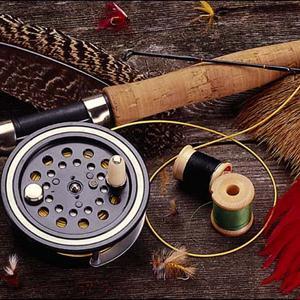 Охотничьи и рыболовные магазины Голышманово
